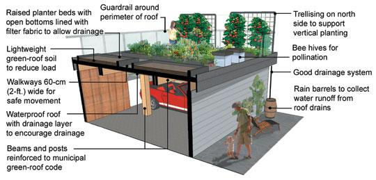 Design A Green Roof Bcliving