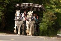 Victoria Carriage Tours — Until Dec. 23