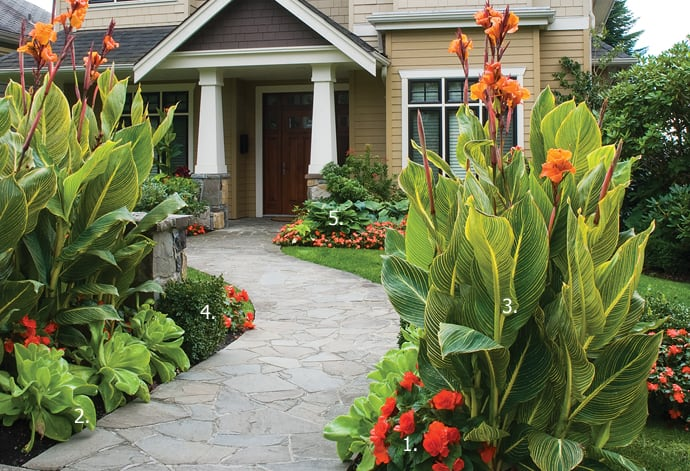 Create A Tropical Garden Entrance Bcliving
