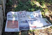 Suffocate Weeds with Newspapers