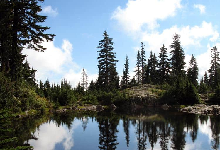 Mystery Lake, Mount Seymour