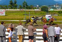 The Deighton Cup: A Day at the Races - July 26