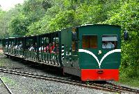 Ecological Jungle Train