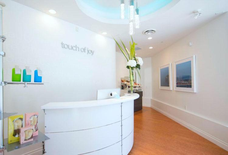 Touch of Joy, Venus Freeze Facial, $450 (2+ hours)