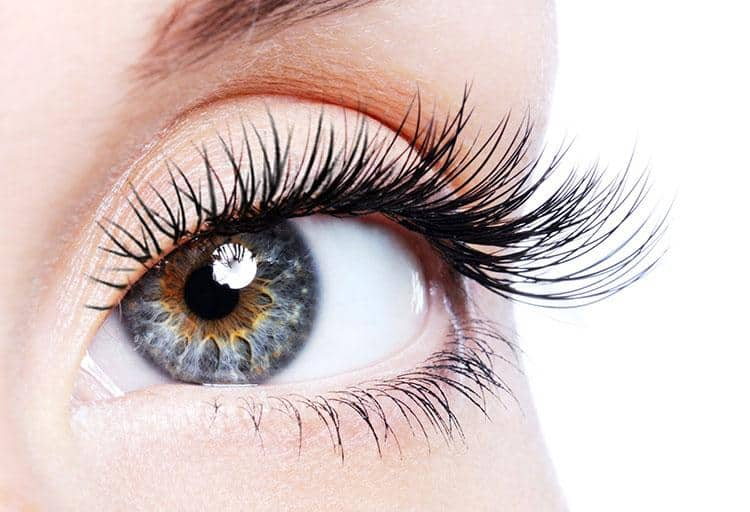 Lash Products That Really Work Bcliving