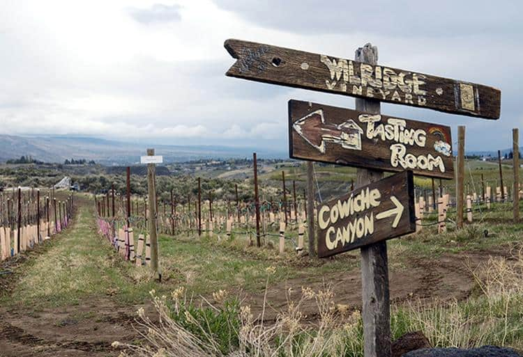 Yakima Valley offers exploration from wine country to wild country