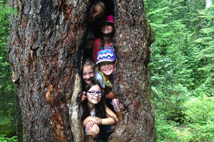 Mount Seymour Eco-Adventure Summer Camps