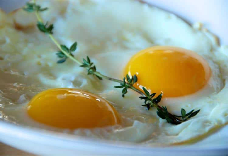 Eat your egg yolks
