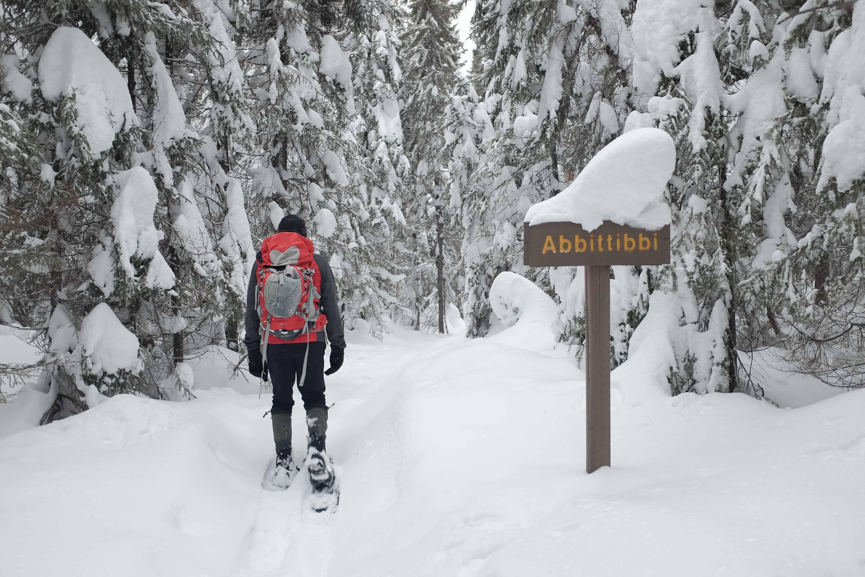Go Here: Parc national d'Aiguebelle, Quebec