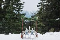 14-Grouse-Mountain-winter-shoot-Grouse.jpg