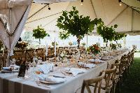 reception-decor-White-events.jpg