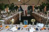 reception-White-Events.jpg