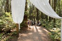 ceremony-venue-Pacific-Spirit-Park.jpg
