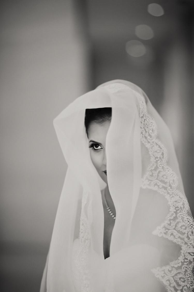 Alfred Angelo gown and veil