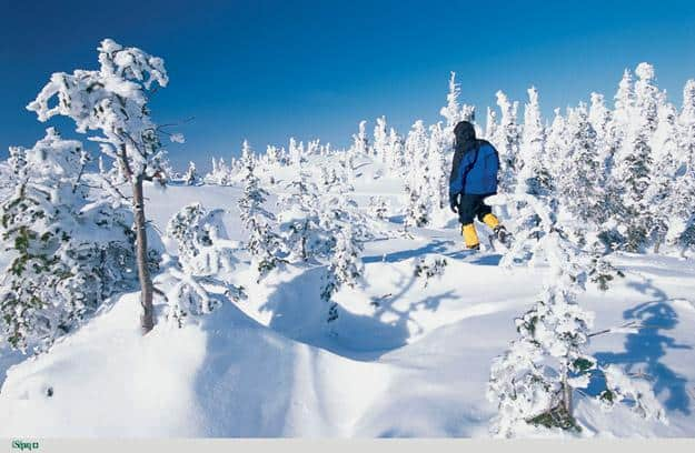Snowshoeing is one of the more popular activities