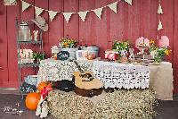 WeddingBelles_country_inspired.jpg