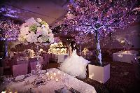 JONETSU_SoniaAdam_reception_decor.jpg