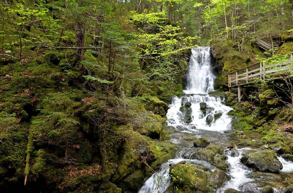 Dickson Falls Fundy National Park