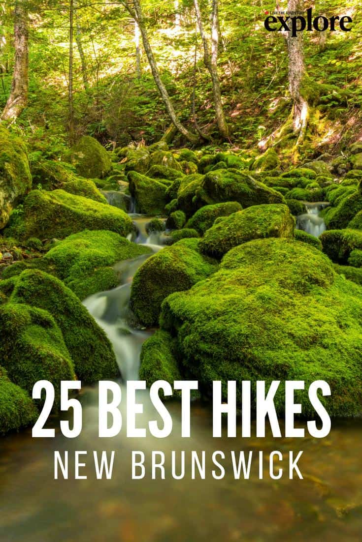 25 Best Ideas About Mac Makeup Artists On Pinterest: New Brunswick's 25 Best Hiking Trails