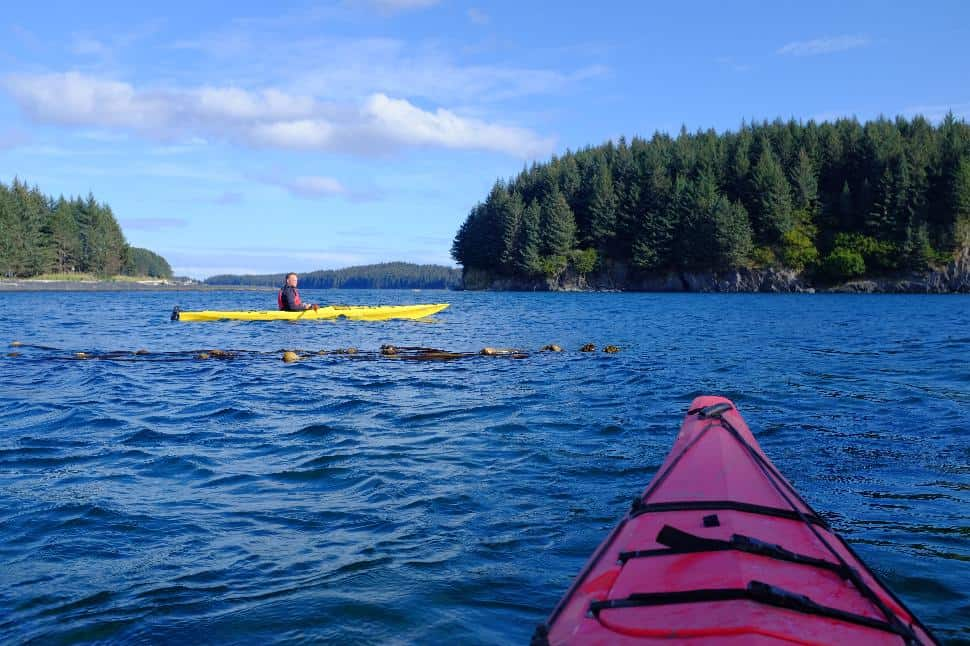 Kayaking Kodiak