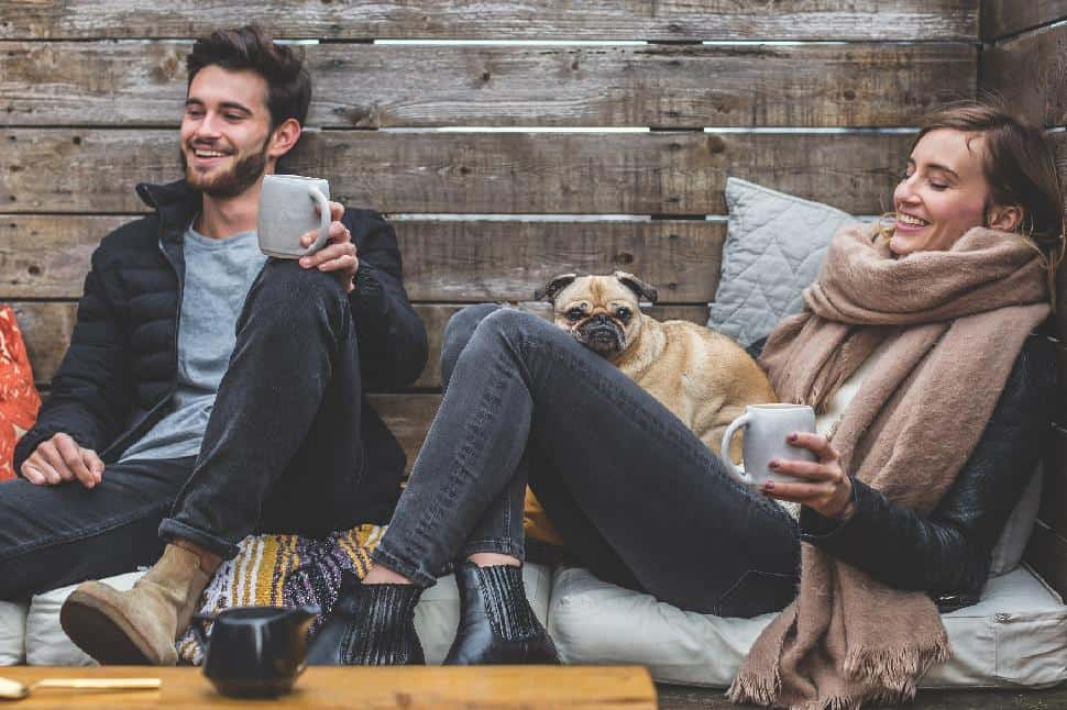 dog cuddle pug people lounge relax