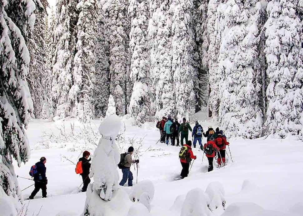 Snowshoeing in Vernon
