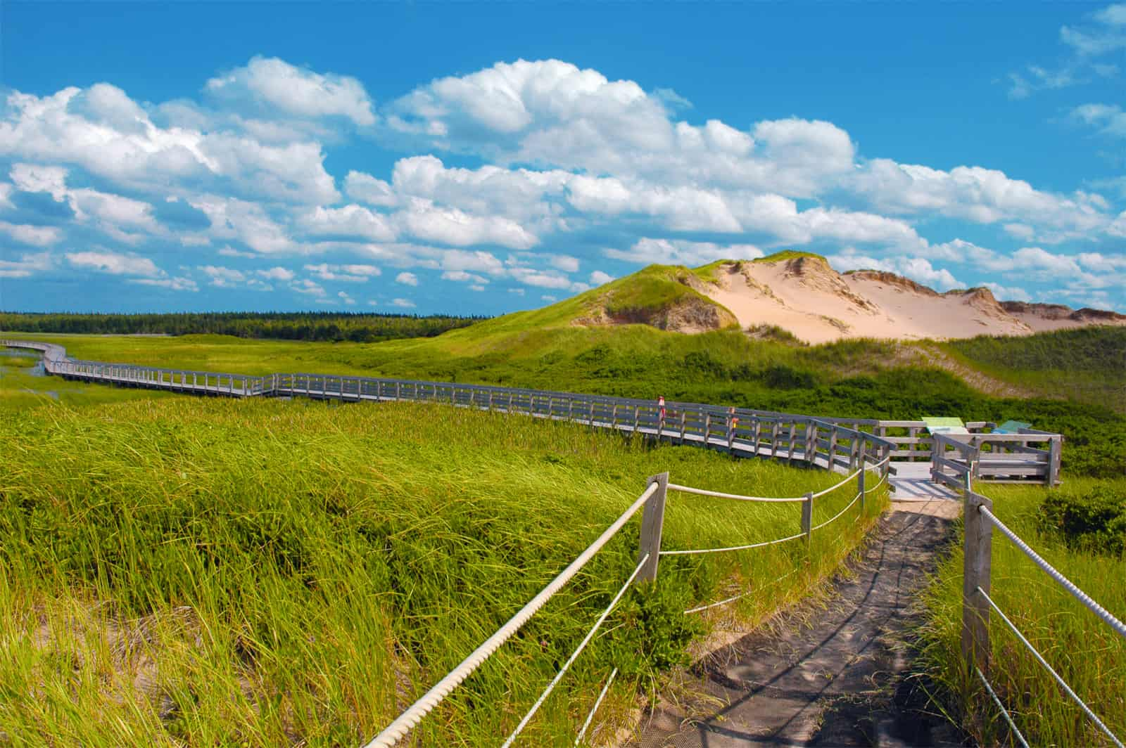 25 of the Best Hiking Trails on Prince Edward Island
