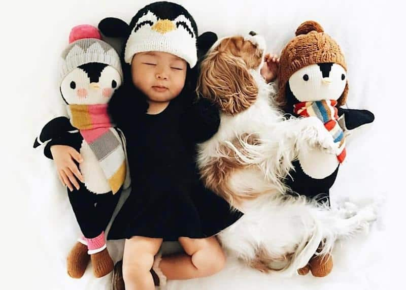 2. Cuddle and Kind Dolls, $59