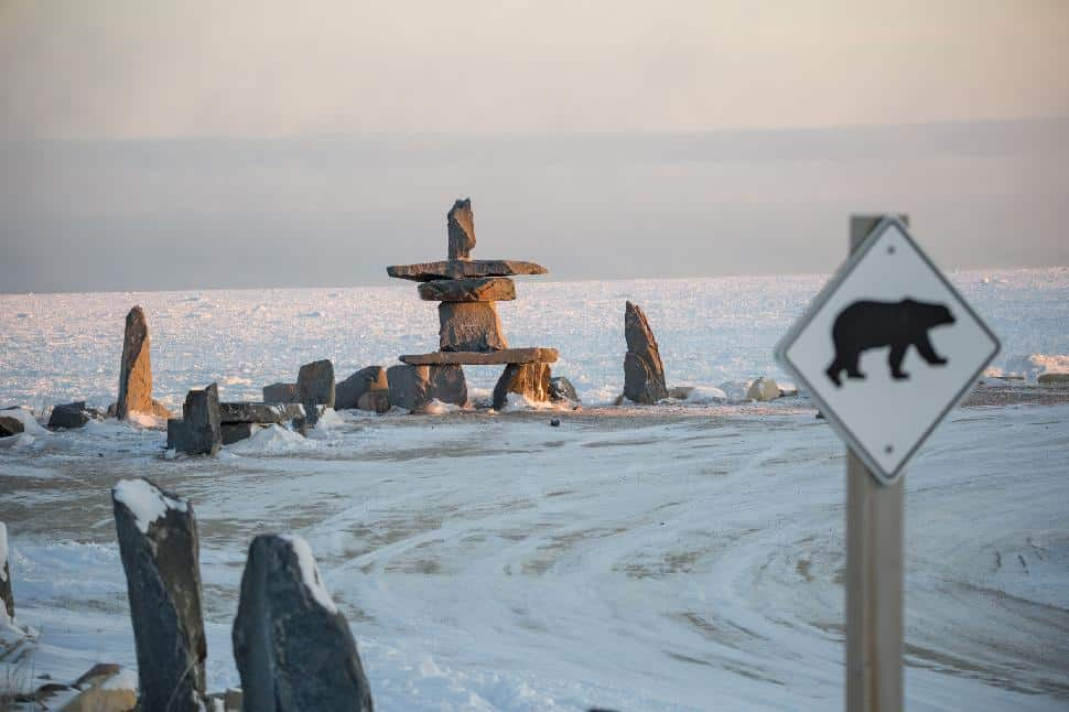Polar Bears in Churchill: Your Next Bucket-List Adventure
