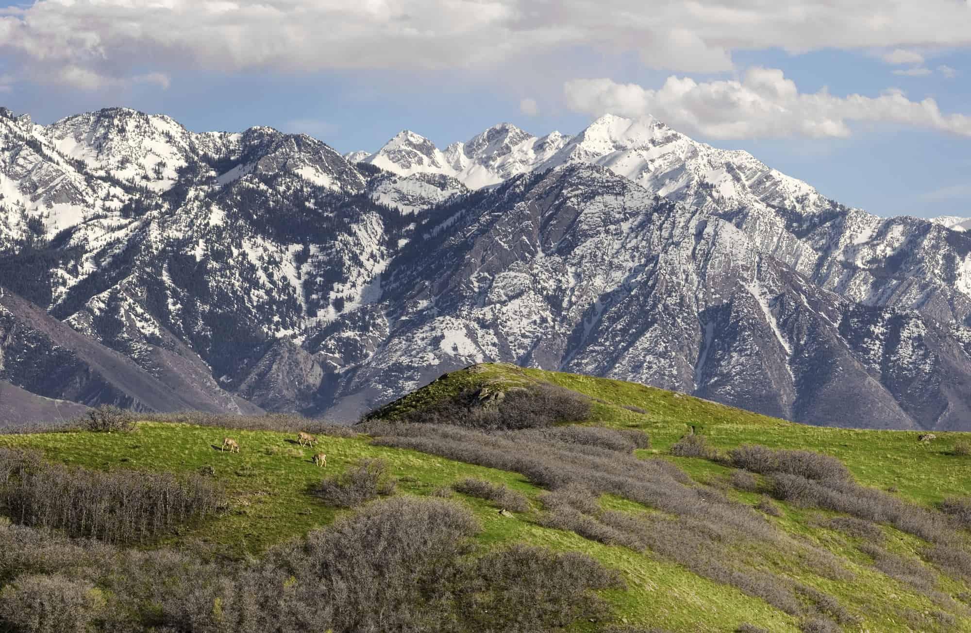 10 Of The Best Hiking Trails Near Salt Lake City Utah