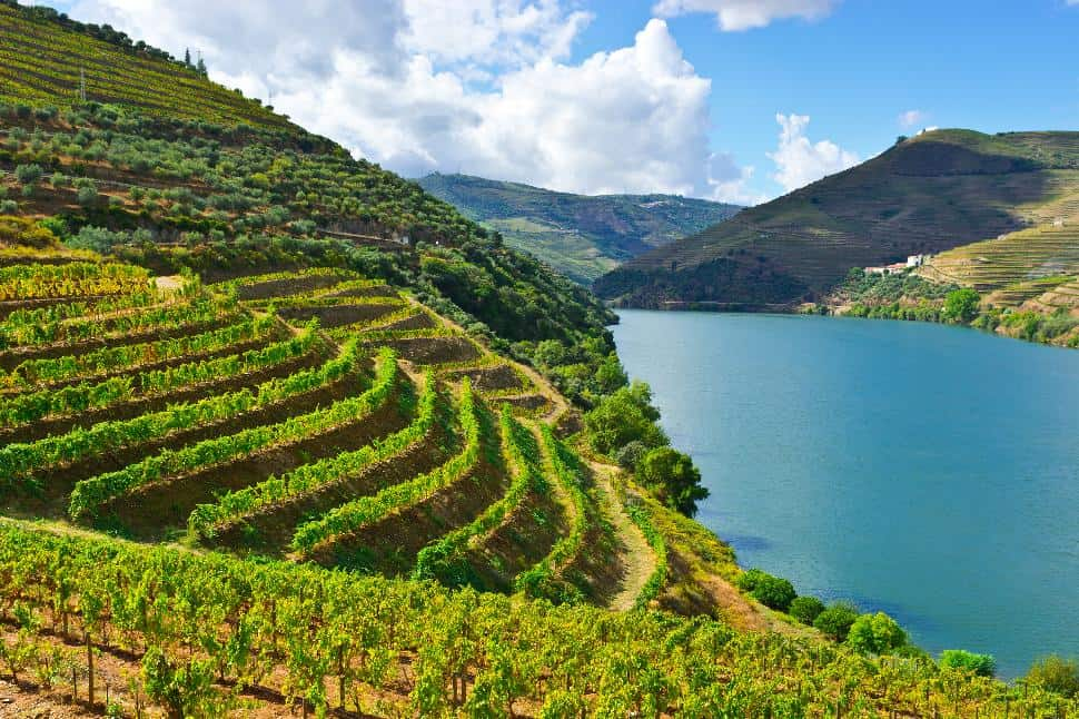 Form-Genuine-Connections-Douro-Valley