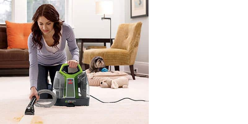 8 Easy Ways To Clean Up Tough Pet Messes Bcliving