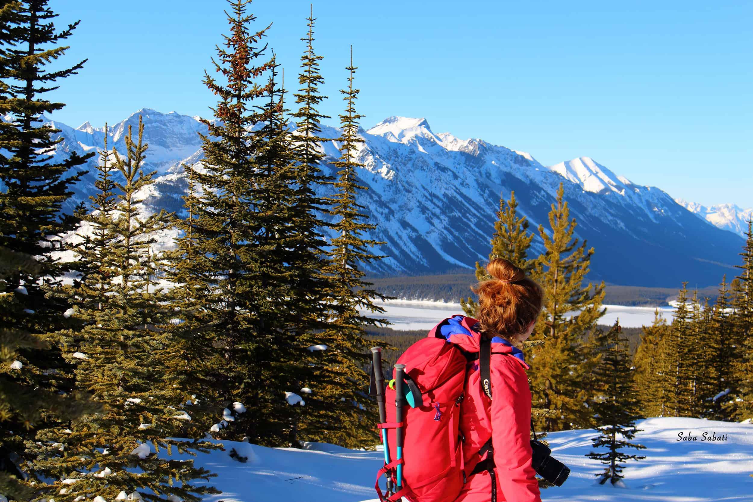 10 of the Best Snowshoe Trails near Edmonton, AB