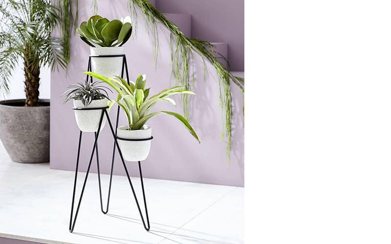 Iris Planter and Chevron Stand, West Elm, $181