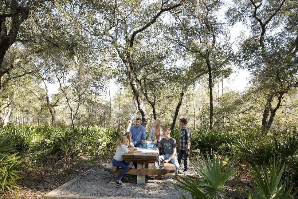 Picnicing family in Panama City Beach park conservation