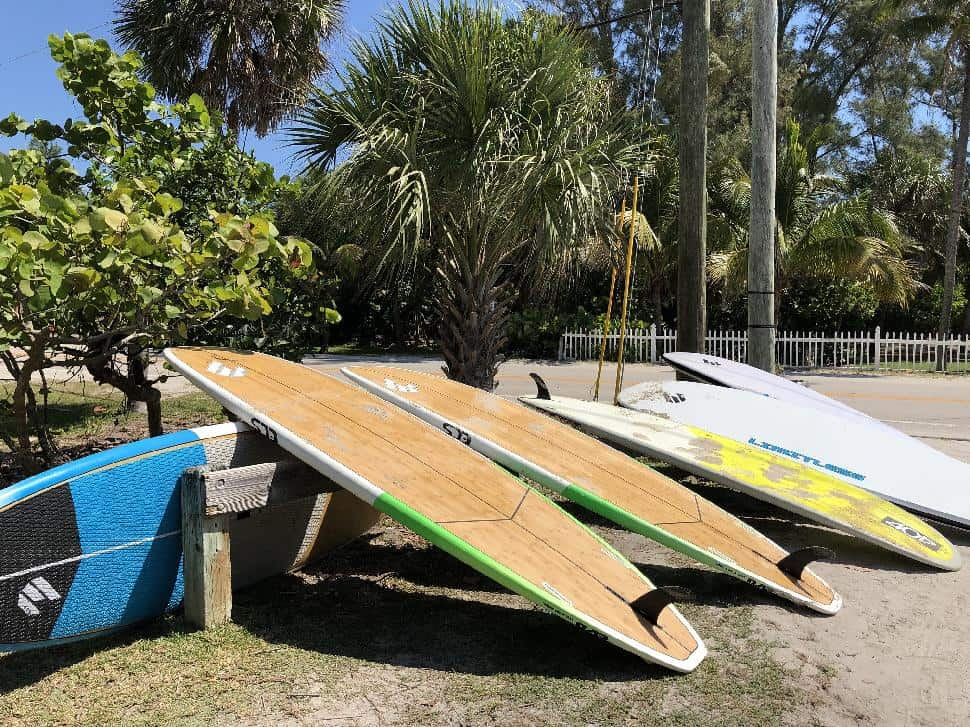 Paddle boards at Zeke's Surf and Paddle | Chloe Berge