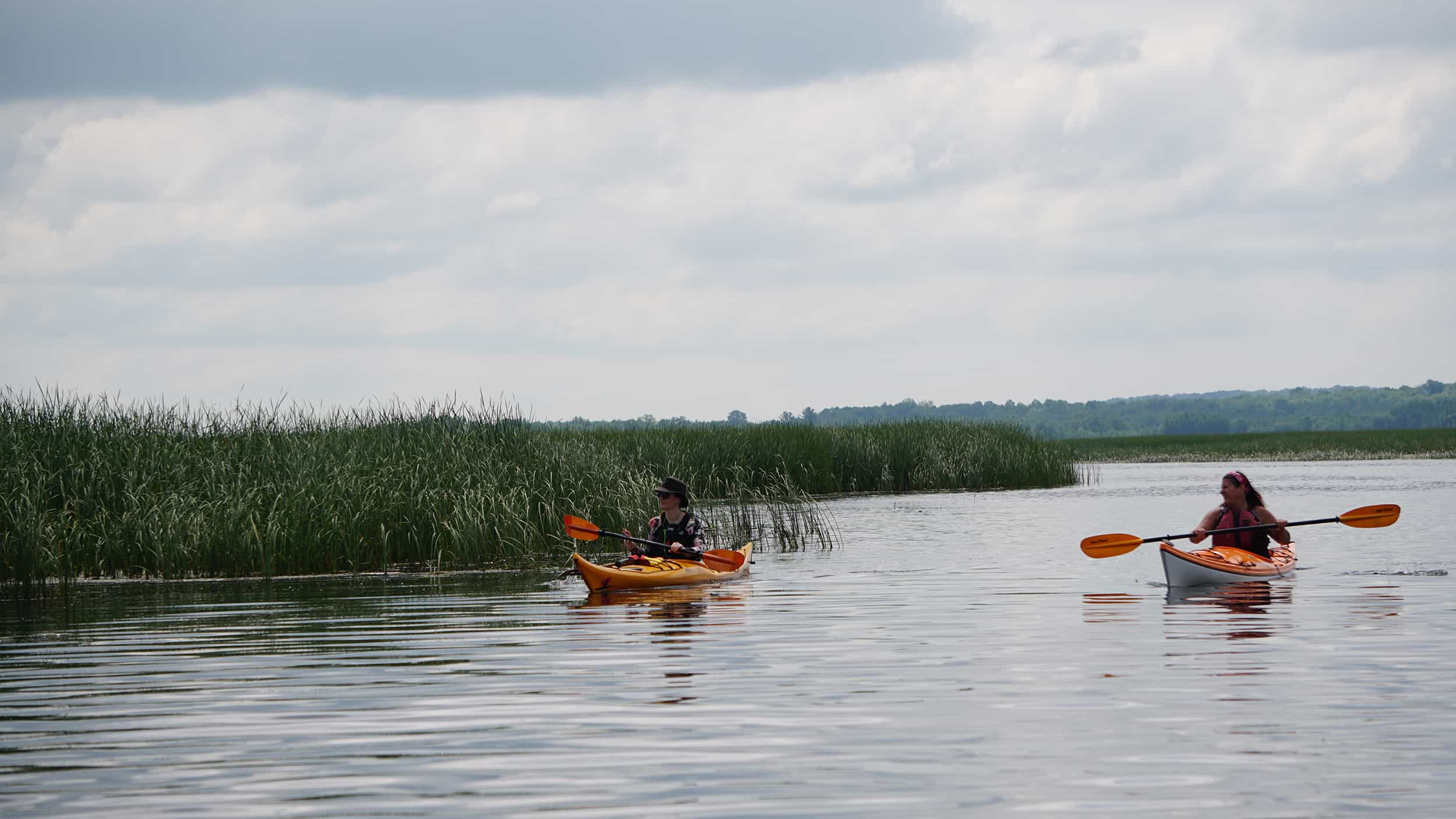 The Happy Camper: The Journey of Paddling Ontario's Lake Country