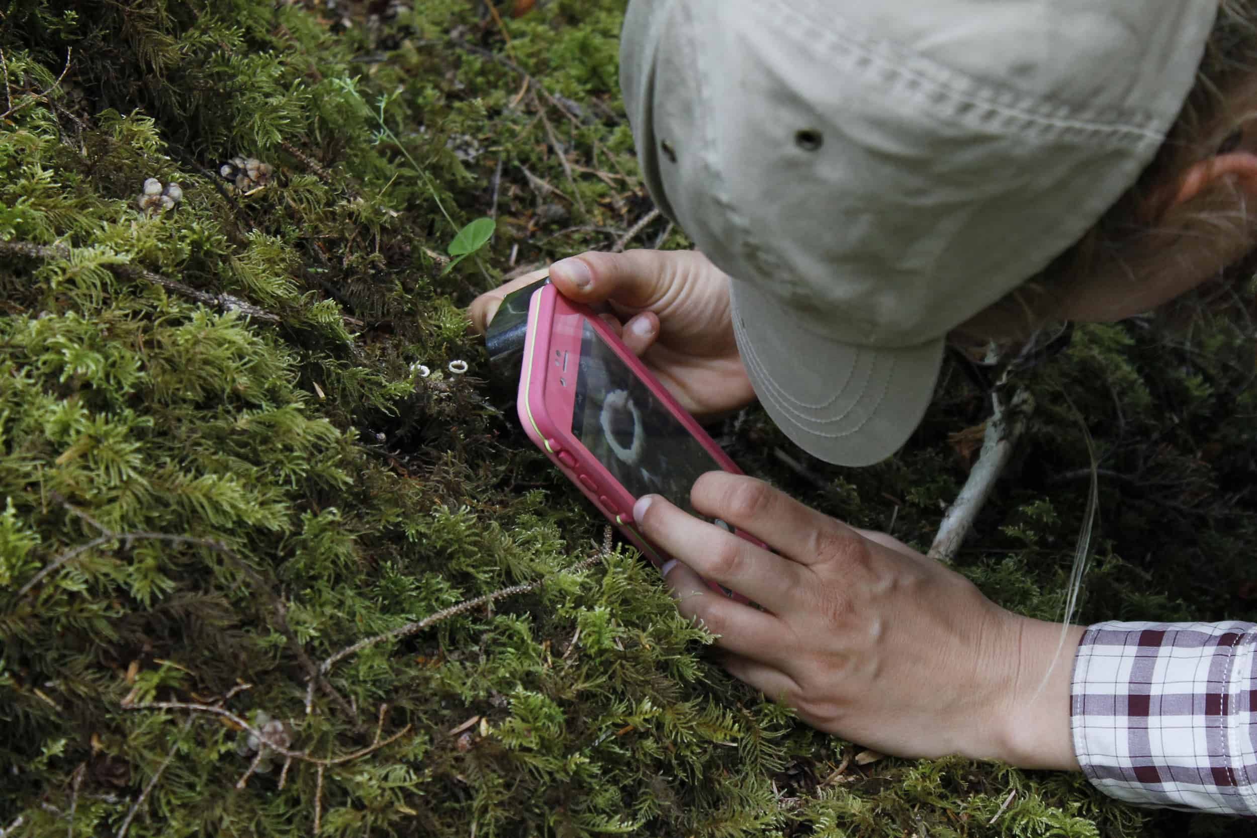 There's an app for that: You can now become a citizen scientist with a click of your phone