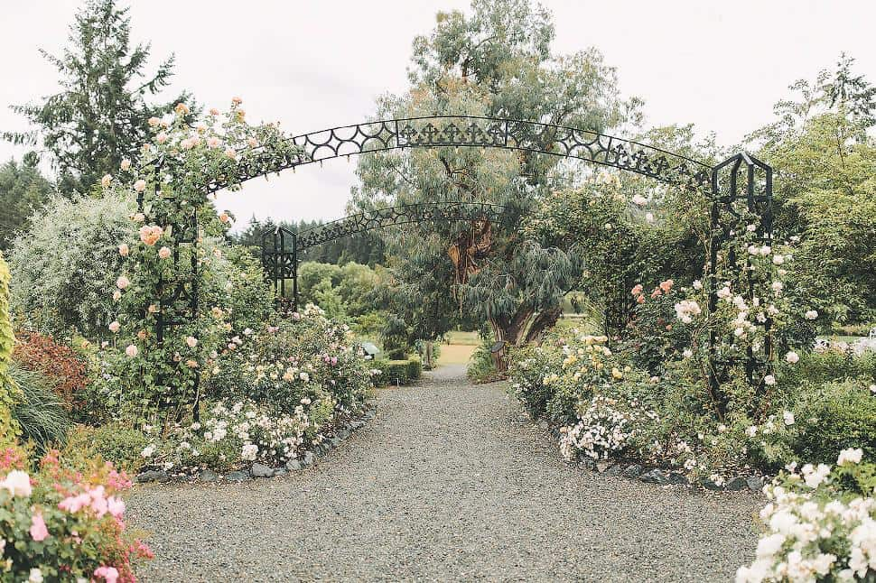 horticultural centre of the pacific wedding