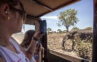 Zimbabwe Matoba National Park Safari Travellers Picture Elephants Landscape