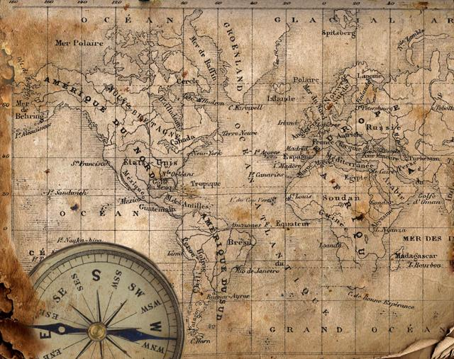 pet's eye view camera