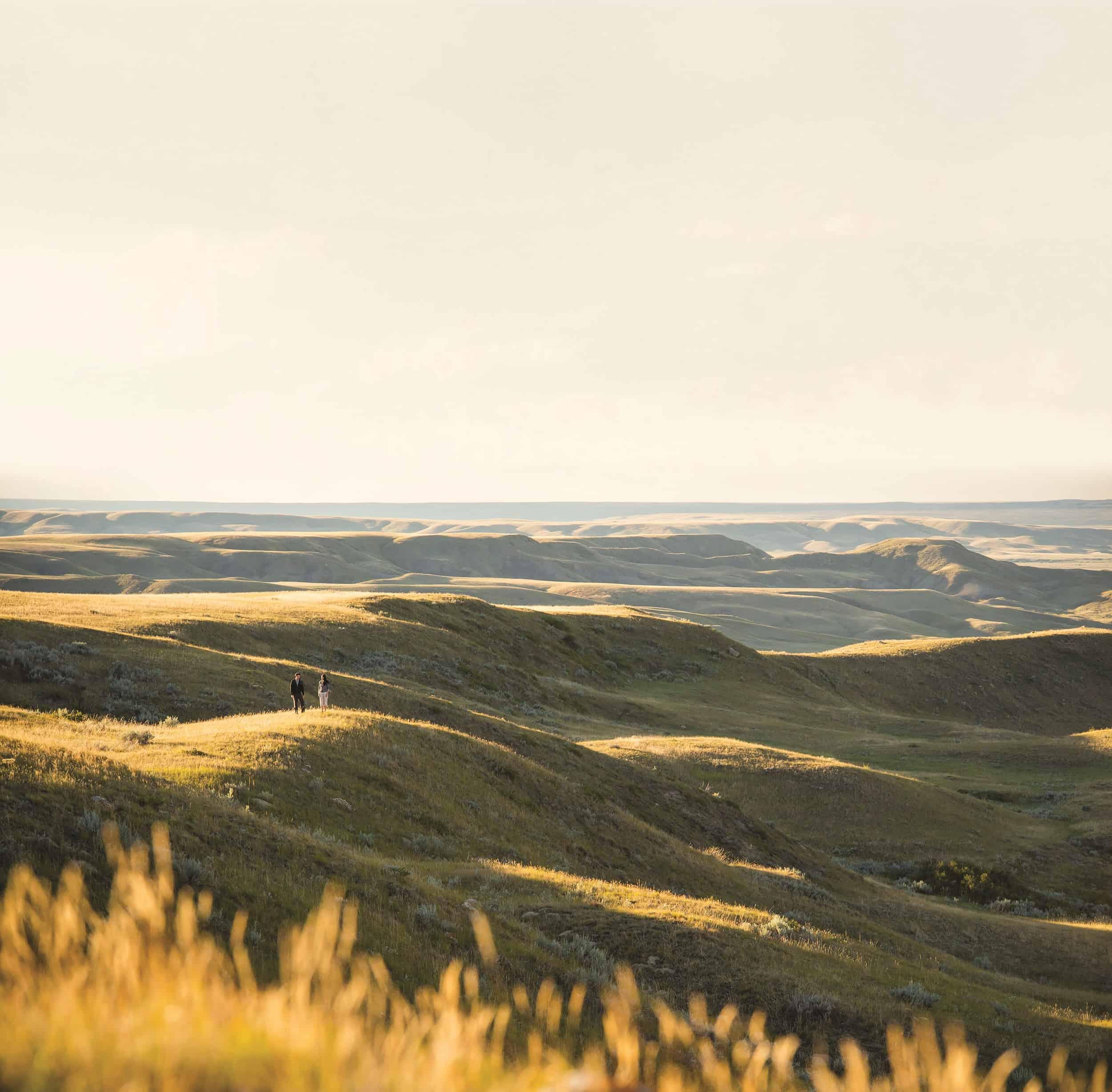 Bison, Bones and Buttes: Rediscovering Saskatchewan