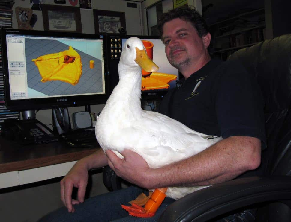 buttercup duck with 3D printed legs