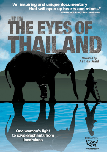 The Eyes of Thailand DVD