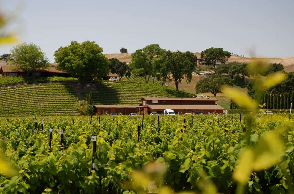 Santa Ynez Valley is a refreshingly affordable alternative to Napa.