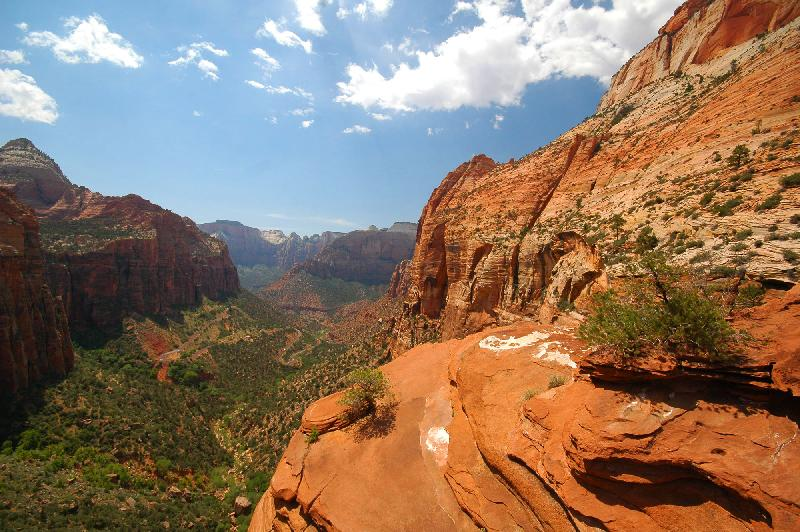 Canyon Overlook Trail - Zion National Park