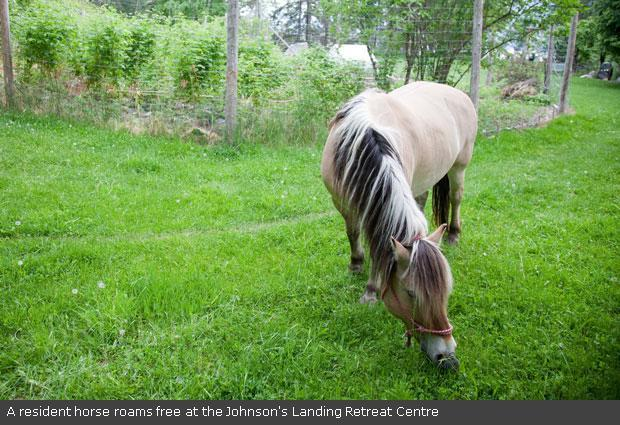 Raytek MT4 Mini Temp Non-Contact Thermometer Gun with Laser Sighting