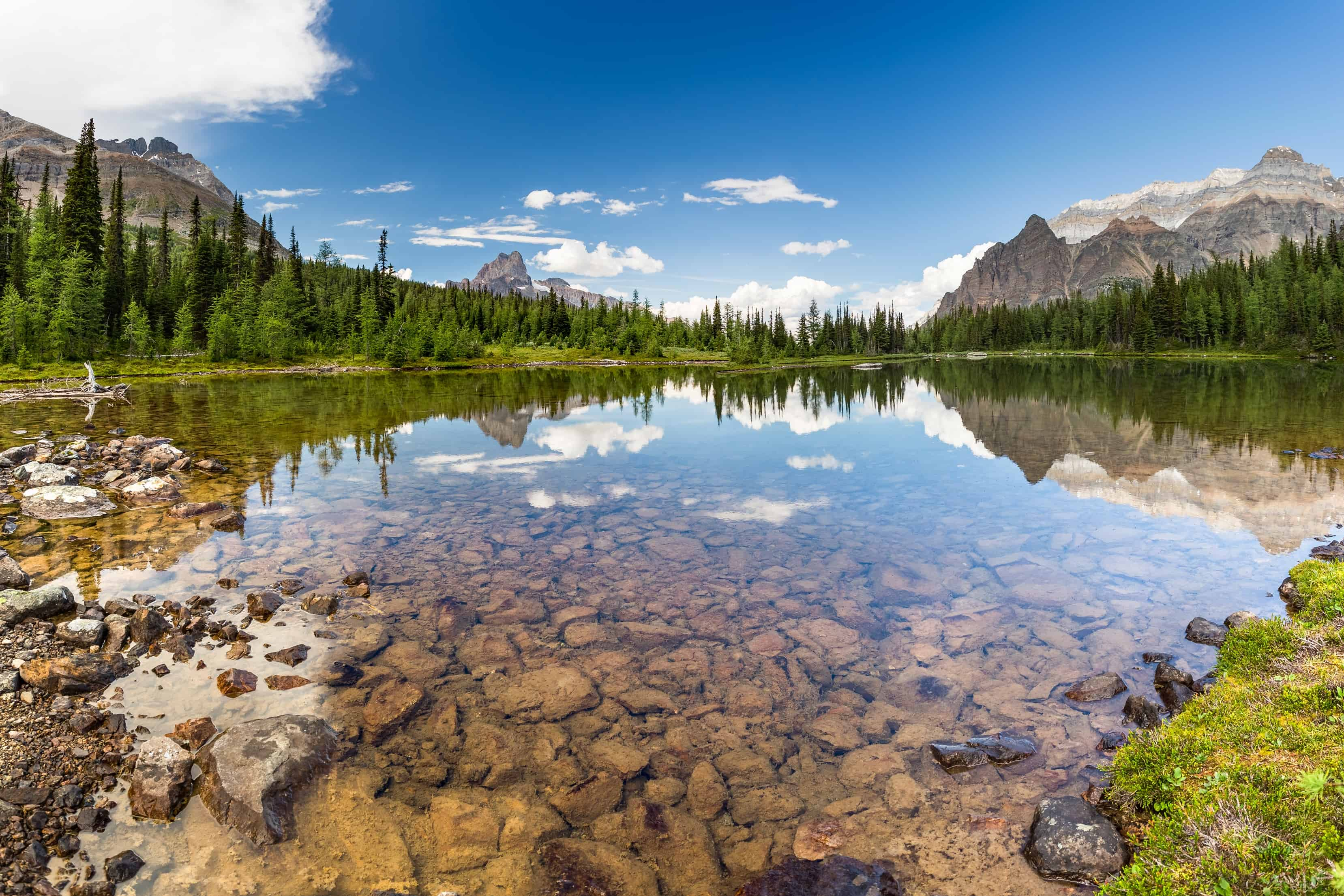 20 interesting facts visitors should know about british columbia