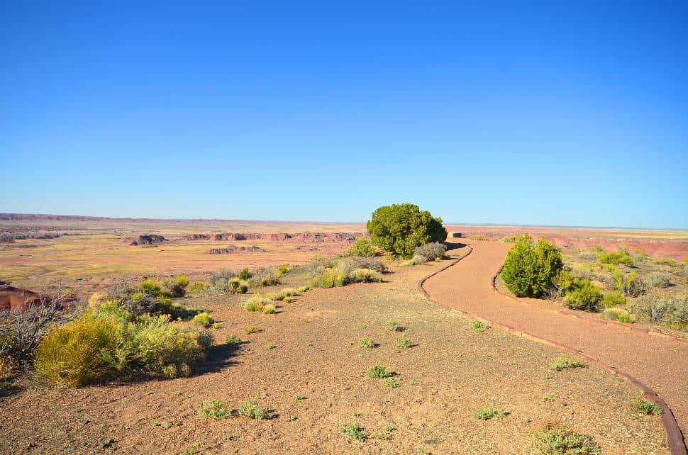 Painted Desert Trail Path
