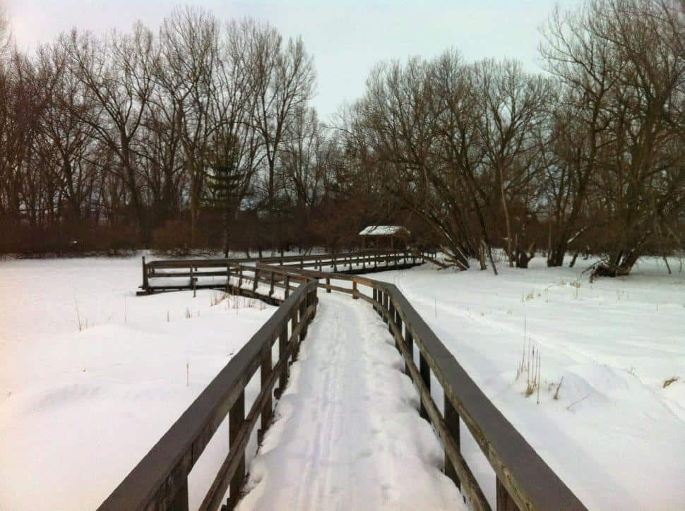 Tifft Nature Preserve Boardwalk
